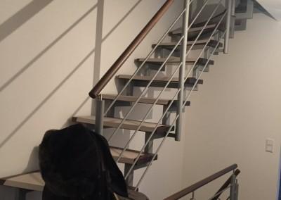 Im Treppenhaus Farbberatung und Malerarbeiten augeführt in der Jahnstraße, 90763 Fürth