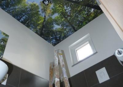 WC Decke Wald - Foto - Tapete tapeziert  in 90763 Fürth
